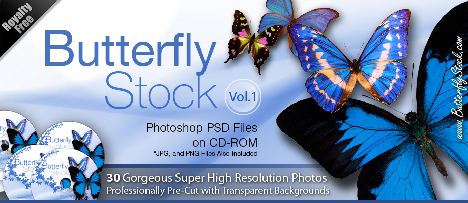 Butterfly Stock Photo's  Photoshop PSD Butterflies